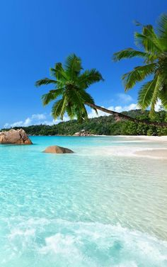 Seychelles, Indian Sea , Africa travel destinations 2019 Easy summer beauty trends that are perfect for your next vacation www. Vacation Places, Vacation Destinations, Dream Vacations, Places To Travel, Africa Destinations, Dream Vacation Spots, Mini Vacation, Romantic Destinations, Romantic Vacations