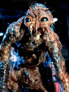 THE FLY (1986 ... Fucked me up when i was younger).