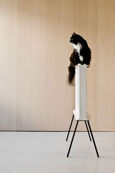 Nine out of ten cats prefer the new 'Serif TV' by the Bouroullec brothers for Samsung. Here's my interview with Erwan about the I-shaped typographic design that returns TVs to the realm of stylish furniture. Serif, Ronan & Erwan Bouroullec, London Design Festival, Home Tv, French Brands, Elegante Designs, Model Homes, Looks Cool, Magazine Design