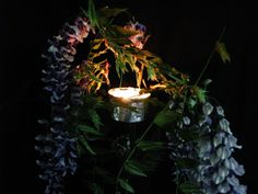 Garden with creative fantasies - Joanna Wajdenfeld