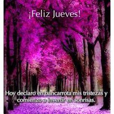 #felizjueves #felizdía #optimismo #fortaleza #ánimo #valor #fuerza #felicidad #sueños #sonrisas #entusiasmo #vida #vive #energy #energy #happy #behappy #bendiciones #blessings #motivación #motivation #optimism #life #live