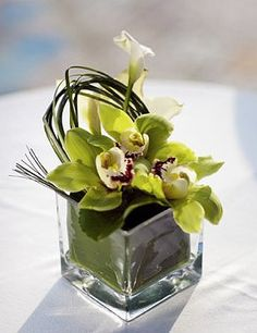 Google Image Result for http://www.abaflowers.com/orchid-centerpiece-350x524.jpg