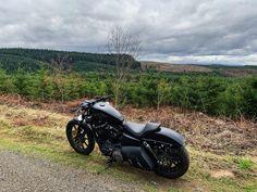 Iron 883, Bike Life, Good Day, Harley Davidson, Biker, Motorcycles, Instagram, Buen Dia, Good Morning