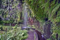 https://flic.kr/p/HDCc7J | Levada do Rei | Levada do Rei - Ribeiro Bonito Santana - Madeira Island