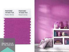 Defend the Trend: Did You Cheer for #Pantone's Color of the Year? (http://blog.hgtv.com/design/2013/12/06/pantone-orchid-color-of-the-year-2014/?soc=pinterest)