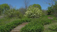 Kingsland Overlook in DeKorte Park.