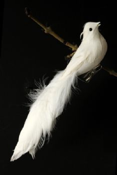 White Feather Bird of Prey Clip-On Decoration WAS £4.50 NOW £3