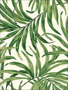 Bali Leaves York Wallpaper Wallpaper York Greens Botanical Wallpaper Tropical Wallpaper, Sure Strip, Easy to clean , Easy to wash, Easy to strip