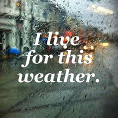 Rain☔️,sound of the cars on wet roads , headlights on cars ...smell of the petrichor; the sweet smell of cleansing of the world ...the birds singing to each other in the trees is the reason why my best days are the ones that are full or rain