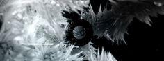 t1/2. Music: Drasko V & Kero - t1/2  Video: Gabor Ekes / Drastic Motion  t1/2 EP Kero & Drasko V Detroit Underground - DETUND 2012  Detroit ...