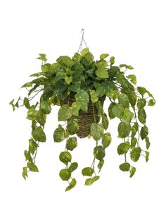 Artificial Real Touch Pothos Hanging Plant in Beehive Basket