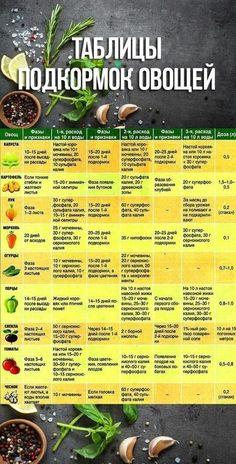 Vegetable Garden, Home And Garden, Vegetables, Plants, Lawn And Garden, Vegetables Garden, Vegetable Recipes, Vegetable Gardening, Plant