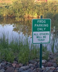 Frog parking only.