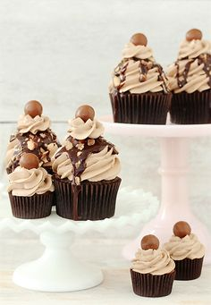 double chocolate mocha crunch cupcakes w/chocolate buttercream.this could possibly beat the Rollo Cupcakes at Christmas! Mocha Cupcakes, Yummy Cupcakes, Cupcake Cookies, Banana Cupcakes, Gourmet Cupcakes, Strawberry Cupcakes, Easter Cupcakes, Velvet Cupcakes, Flower Cupcakes