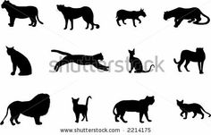 http://thumb1.shutterstock.com/display_pic_with_logo/4080/4080,1164293292,4/stock-vector-cats-silhouettes-2214175.jpg