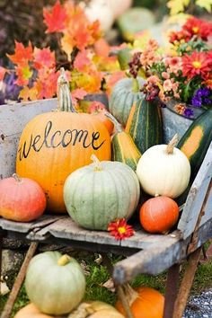 Greet your guests at your ceremony with this cute and inexpensive fall display!