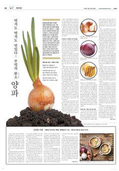 newspaper food 양파