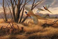 Pheasant Farms Wrapped Canvas Art