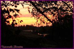https://flic.kr/p/MMvFDe | coucher de soleil et levé de brume d'automne