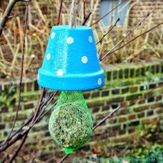 Meisenknödel in or on the pot - beautifying action for vile Meidenknöde . - DIY by Ines Felix - Vogelhaus Wood Bird Feeder, Bird Feeders, Diy For Kids, Crafts For Kids, Fun Crafts, Diy And Crafts, Winter Diy, Make Your Own, Make It Yourself