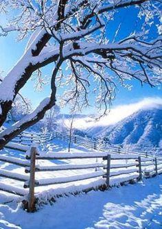 beautiful country winter scene