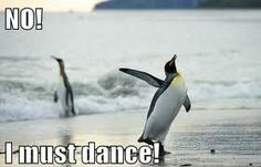 No! I must dance!!! Great life motto
