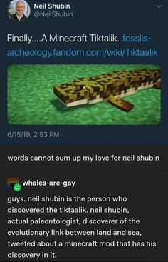 Tap to see the meme Tumblr Funny, Funny Memes, Hilarious, Dark Humour Memes, Science Memes, Classic Comedies, Minecraft Mods, Nerd Humor, Prehistoric Creatures