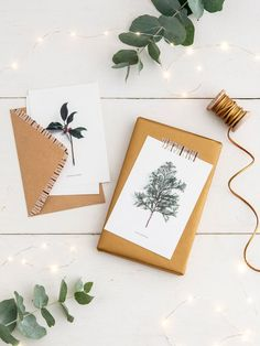 Winter nature postcards, a set of 6 postcards with envelopes in 3 assorted seasonal designs. 15 x Perfect for posting or as a gift topper.