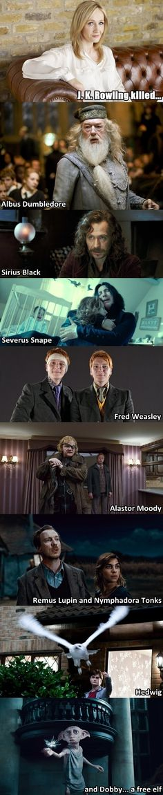 Harry Potter - funny pictures - funny photos - funny images - funny pics - funny quotes - #lol #humor #funny