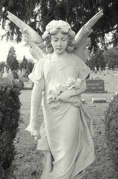 Sweetest Heart of Mary Cemetery: Angel Statue - Detroit MI