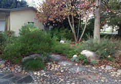 Native Plant Garden Tour | Saturday–Sunday, April 5–6, 2014 10am–5pm