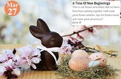 Teelie Turner Shopping Network - Google+  Happy Easter A Time Of New Beginnings. Love it: www.teelieturner.com   This is our Easter newsletter that we have been busy putting together with some great Easter articles, tips for Easter meals and some great giveaways! #EasterTime