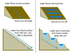 Permaculture - Slow down water flow with trenches so it can slowly sink deep int. - Permaculture - Permaculture – Slow down water flow with trenches so it can slowly sink deep into the soil. Storing Water, Drainage Solutions, Water Solutions, Erosion Control, Pest Control, French Drain, Water Management, Water Retention, Rain Garden