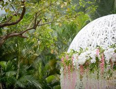 Beautiful Gardens, Romantic, Instagram Posts, Plants, Romantic Things, Romance Movies, Planters, Romances, Plant
