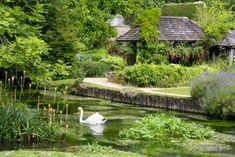 Байбери – самая красивая деревня Англии. Она даже в британских паспортах изображена (15 фото)