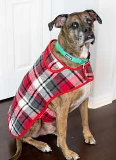 Fur Baby Coat - how to sew a dog coat — SewCanShe Dog Clothes Patterns, Coat Patterns, Sewing Patterns Free, Free Sewing, Pre Quilted Fabric, Dog Coat Pattern, Dog Jacket, Dog Vest, Cute Coats