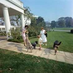 ST-C363-6-63. John F. Kennedy, Jr. with Family Dogs Clipper, Shannon, and Wolf at the White House - John F. Kennedy Presidential Library & Museum