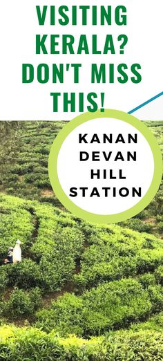 The scenery is stunning. Vivid green tea plants coat the land for almost as far as the eye can see! MUNNAR PHOTOGRAPHY / MUNNAR KERALA / MUNNAR TEA PLANTATION / KANAN DEVAN TEA PLANTATION / KERALA TEA GARDEN / KERALA TEA ESTATE / KERALA VILLAGE / SOUUTH INDIA / INDIA / TEA CULTURE / TEA FARM / FARM LIFESTYLE #TEA #TEAPLANTATION #TEAFARM #INDIA #MUNNAR #KERALA via @daweswideopen FAVOURITE CITIES OF THE WORLD