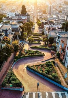 Lombard St. in San Francisco is one of the most popular attractions in the city, not to mention its fun, free, & family oriented. Lombard Street, Places To Travel, Travel Destinations, Places To Visit, San Francisco Photography, San Francisco Travel, San Francisco Street, City Aesthetic, California Travel