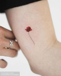 Small poppy flower by rey.jasper · New Wonder, Auckland Poppy Flower Tattoo Small, 3d Flower Tattoos, Dogwood Flower Tattoos, Poppies Tattoo, Flower Tattoo Designs, Little Tattoos, Mini Tattoos, Cute Tattoos, Small Tattoos