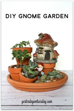 DIY Gnome Garden it's SO easy! #succulents