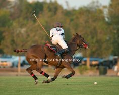 March 23, 2014 Emirates Open Polo Championship at Ghantoot Racing and Polo Club....Day 1....UAE v Desert Palm 1 (UAE wins)...EquusPix-----#2 Guy Gibrat