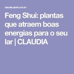 Feng Shui: plantas que atraem boas energias para o seu lar   CLAUDIA