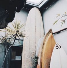 Surf :: Ride the Waves :: Free Spirit :: Gypsy Soul :: Eco Warrior :: Surf Girls :: Seek Adventure :: Summer Vibes :: Surfboard Design + Style :: Free your Wild :: See more Untamed Surfing Inspiration Playa Beach, Beach Bum, Beach Town, Beach House, Beach Vibes, Summer Vibes, Summer Surf, Vans Surf, Oahu