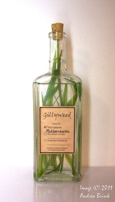 """Gillyweed label  """"Potions cabinet"""" in the laundry room to hold supplies for doing the laundry"""