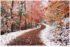 two seasons... breathtaking.