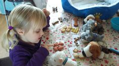 Counting dog biscuits for dog teddies activity