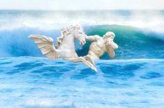 James S Gardiner Saatchi Art, Waves, Digital, Photography, Animals, Color, Photograph, Animales, Animaux