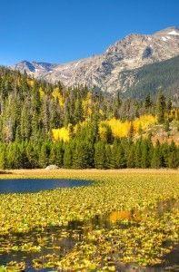 Three Glorious Autumn Hikes Near Colorado Springs