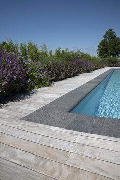Swimming Pool Landscaping, Swiming Pool, Swimming Pools Backyard, Swimming Pool Designs, Pool Screen Enclosure, Pool Remodel, Pool Installation, Backyard Pool Designs, Cool Pools